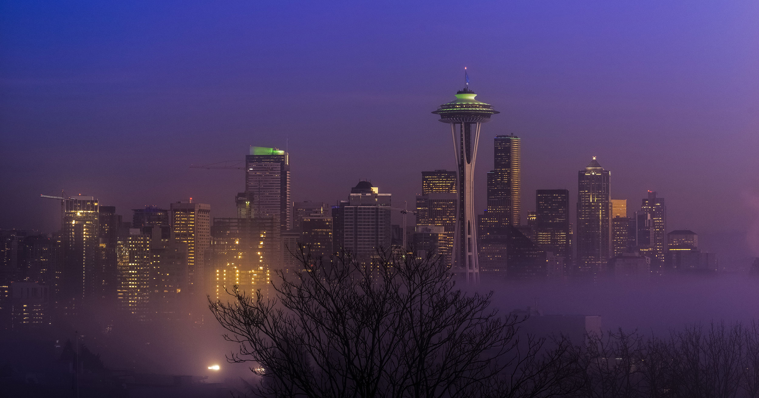 Seattle Purple Fog