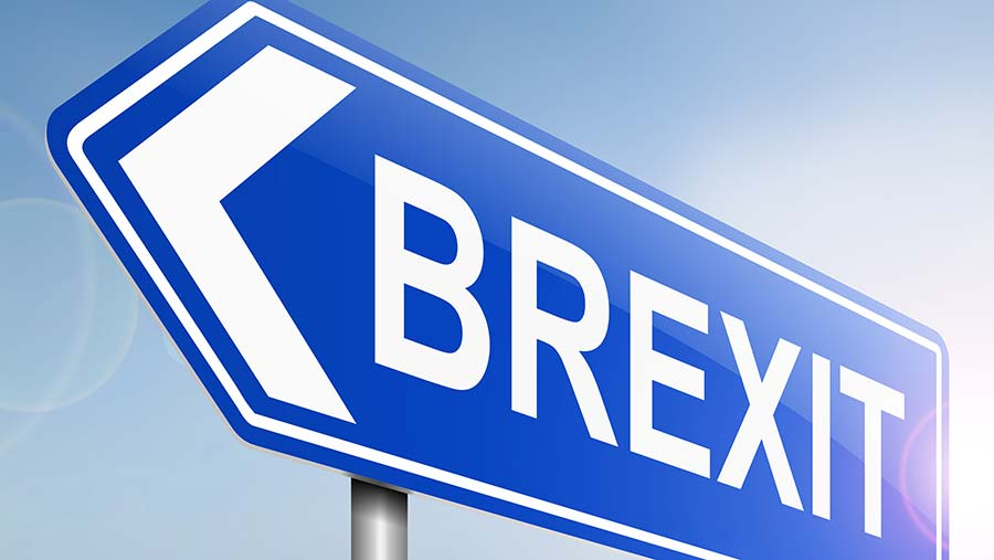 brexit-signpost-c-ING.jpg