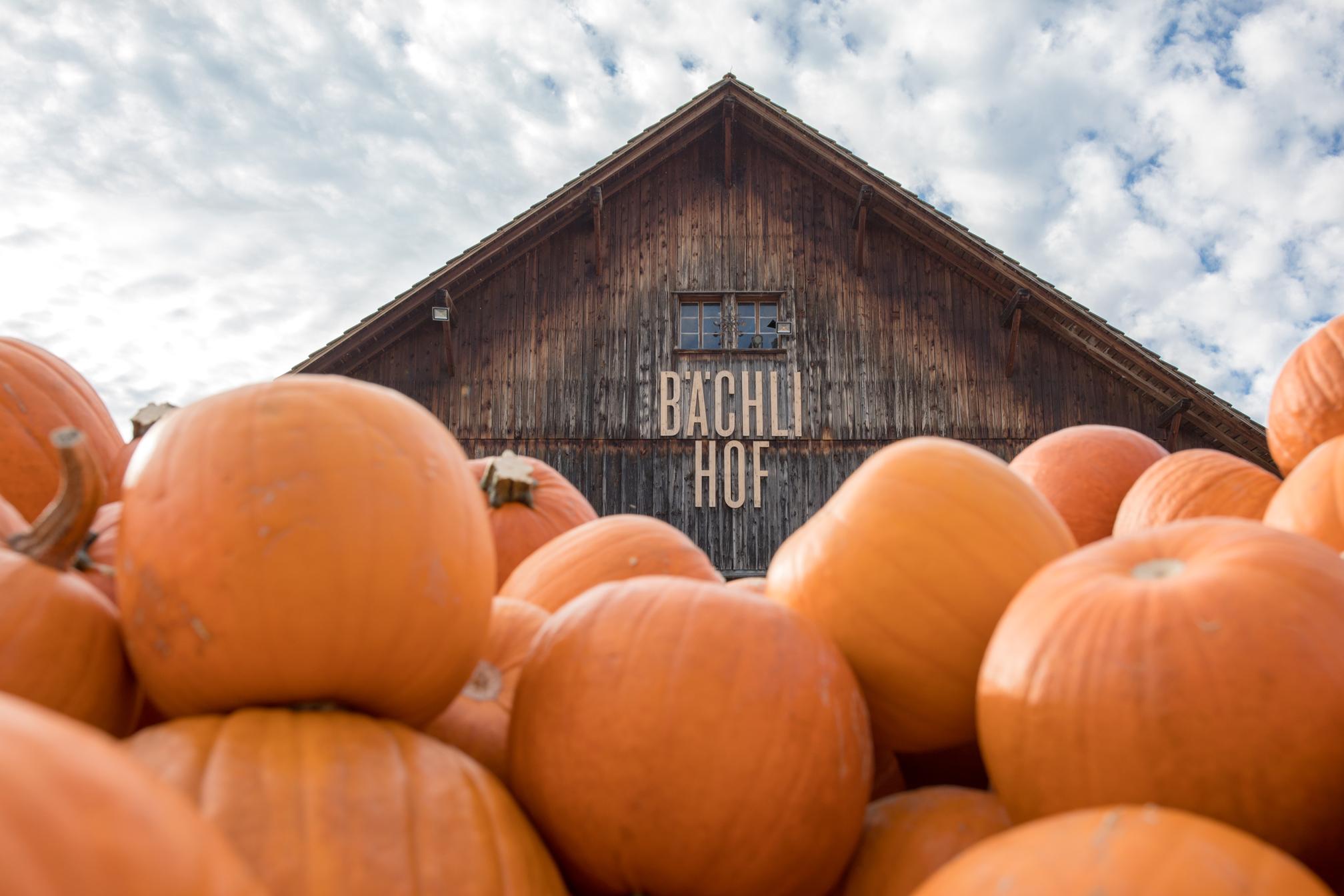 Bächlihof, Jucker Farm in Rapperswil-Jona, Switzerland — Something Swiss