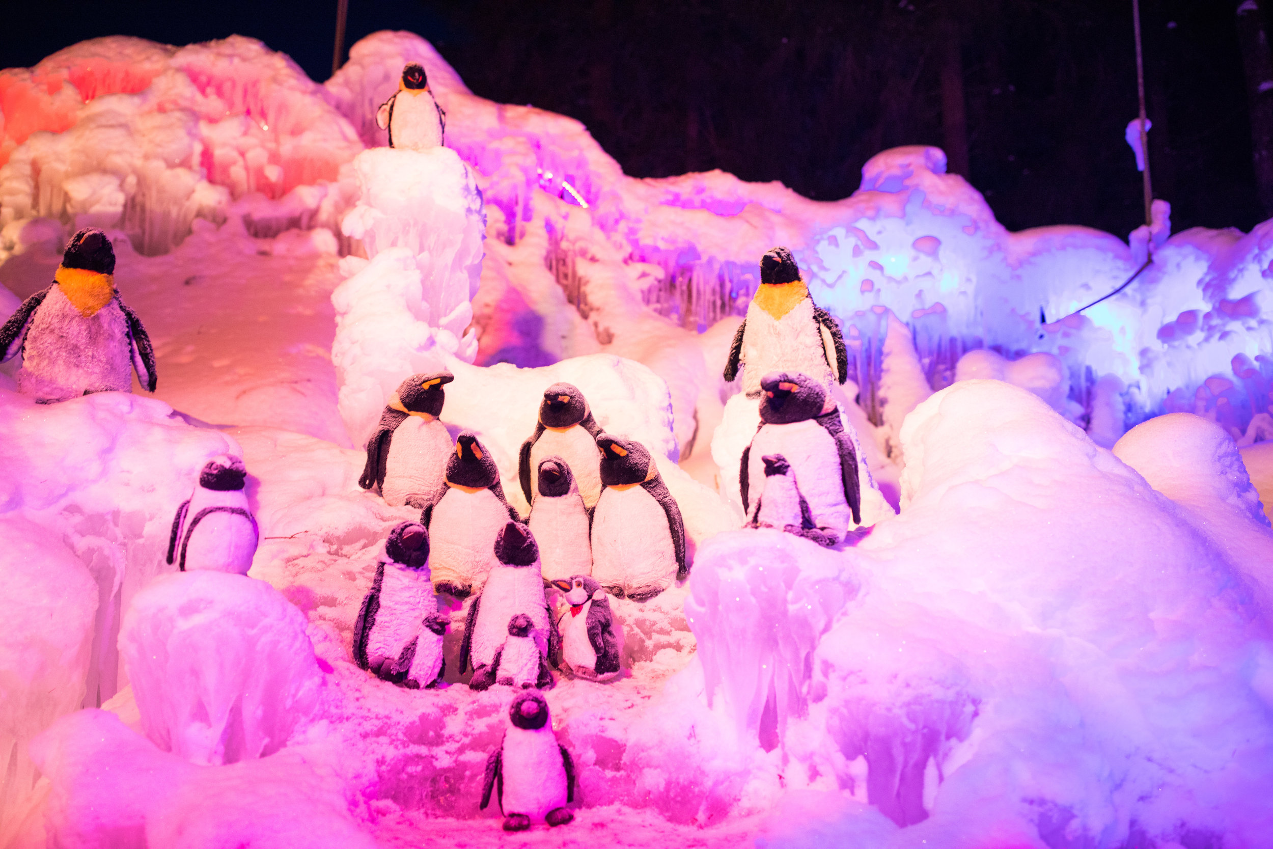 ice-palace-penguins-schwarzsee-switzerland-something-swiss.jpg
