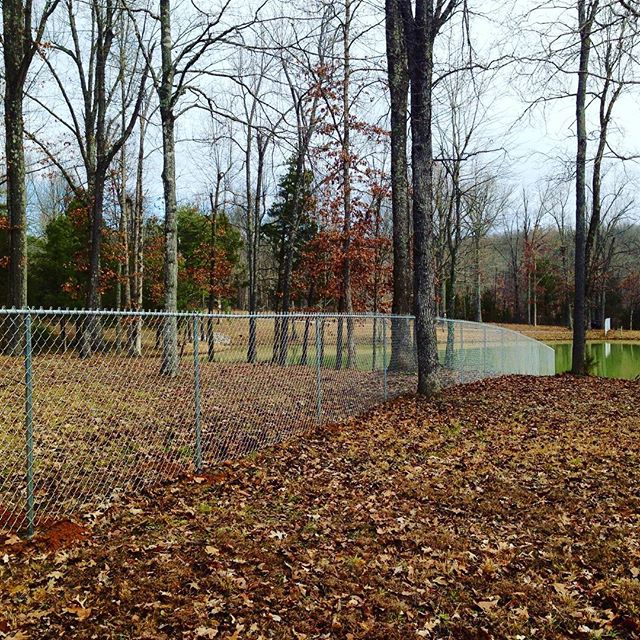 5ft tall, residential,  chainlink fence installed to secure front of property from ATVs and vehicles. #woods #fenceline #fence #kentucky  #security