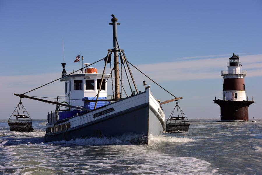 iceboats02-03-1567.jpg
