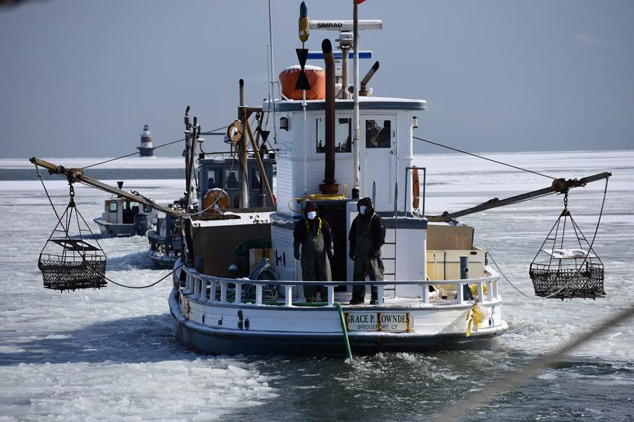 iceharbor 09.jpg