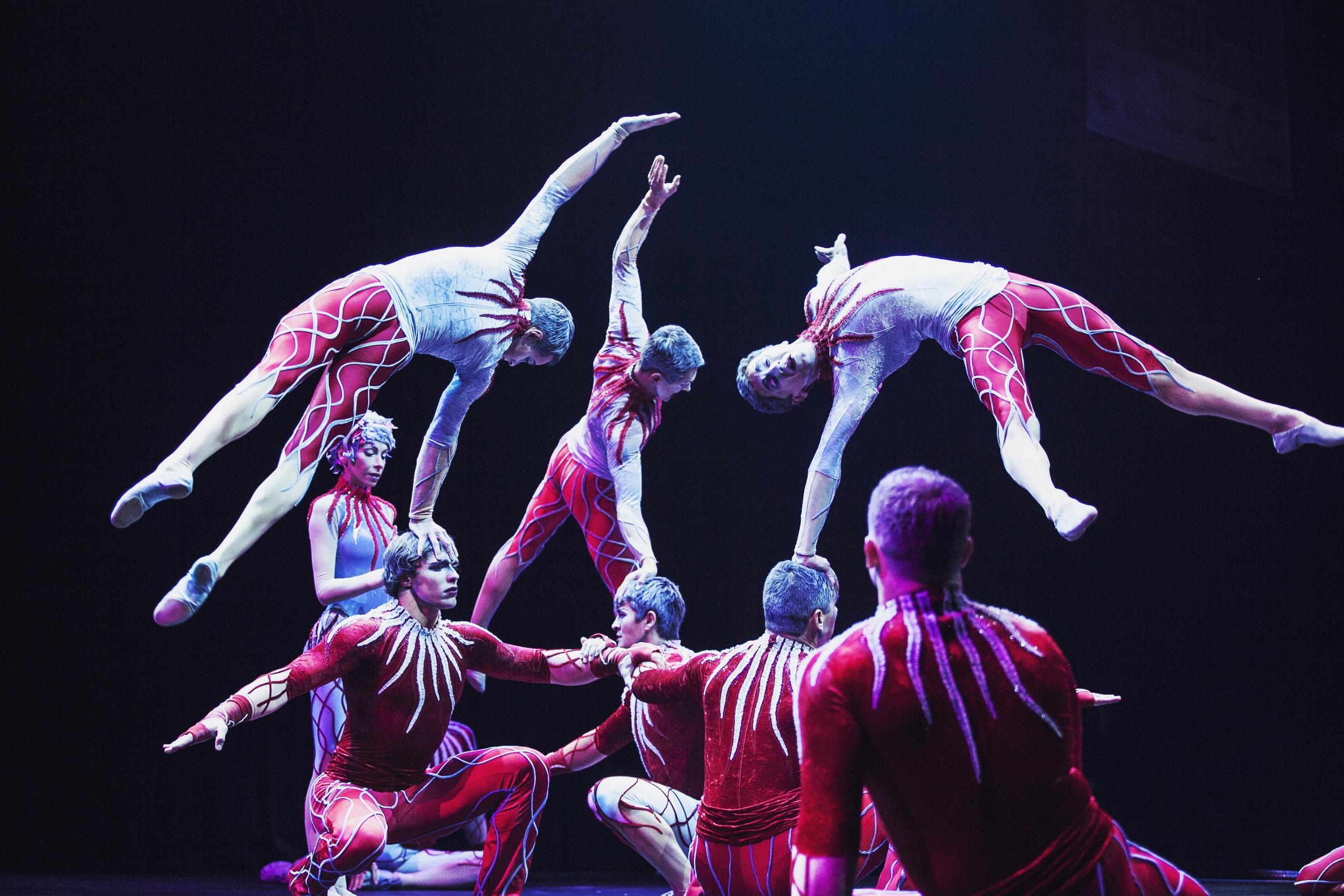 crystal schreiner cirque de soliel8.jpg