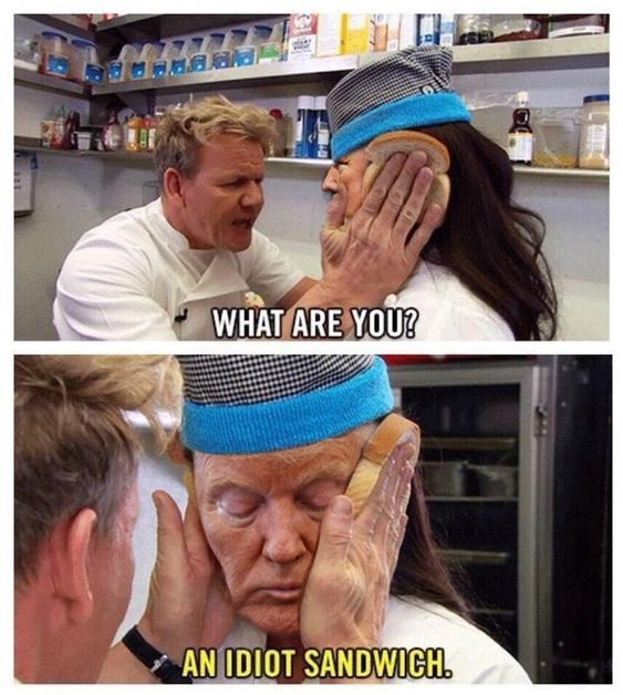 Idiot sandwich.jpg
