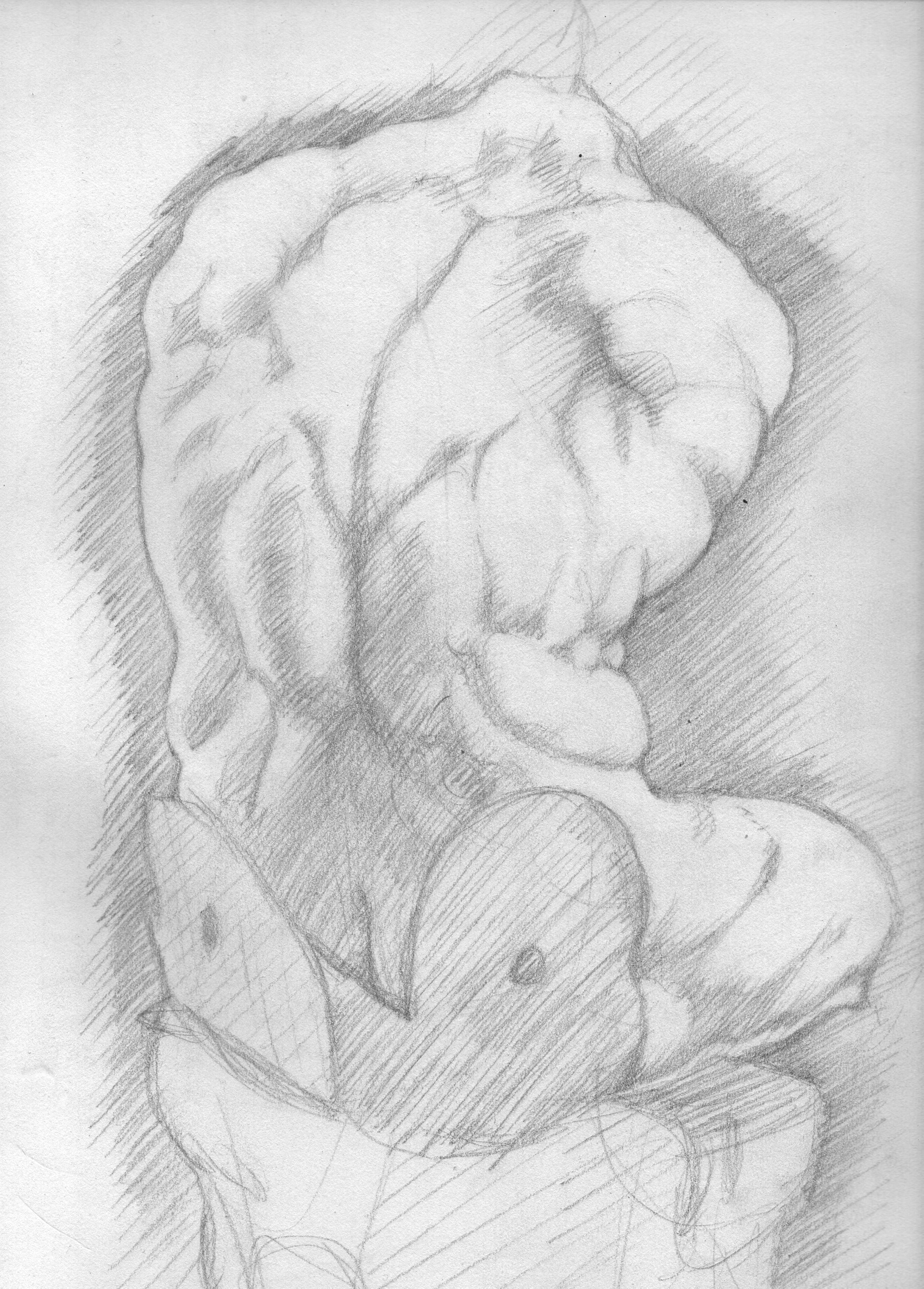 Sketch of the Belvedere Torso - 1995