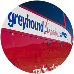 Greyhound Bus between Sydney and Cairns