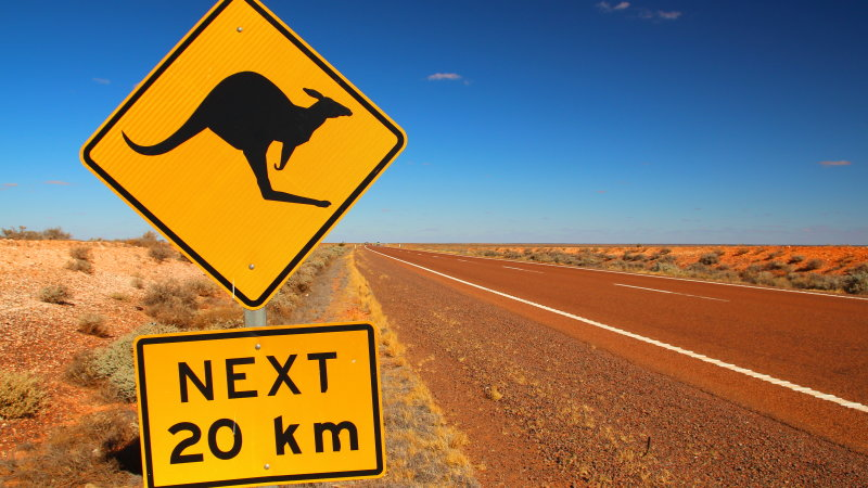 stock-photo-australian-road-sign-on-the-highway-341416760.jpg