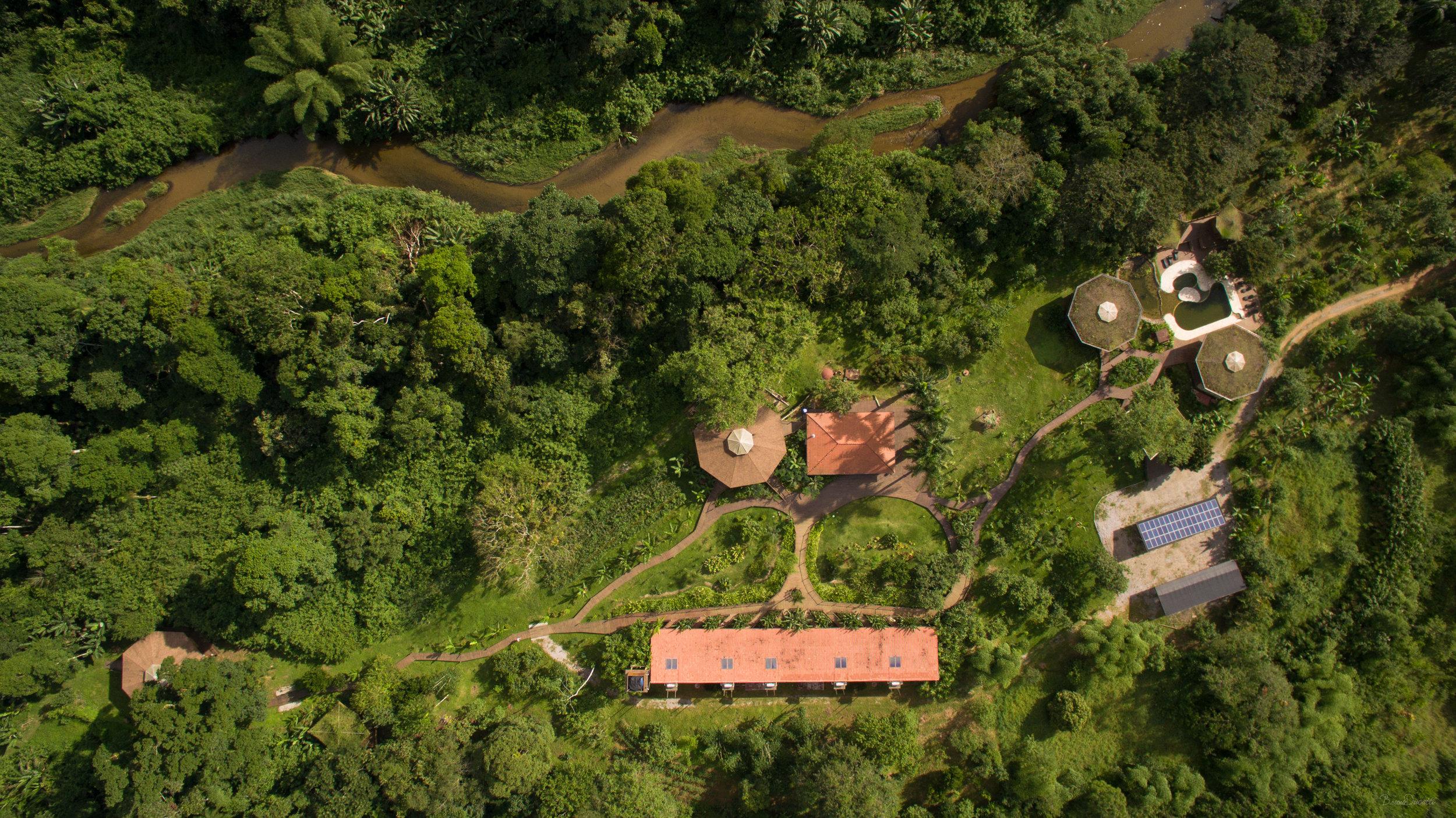 Ecobananal_aereo.jpg
