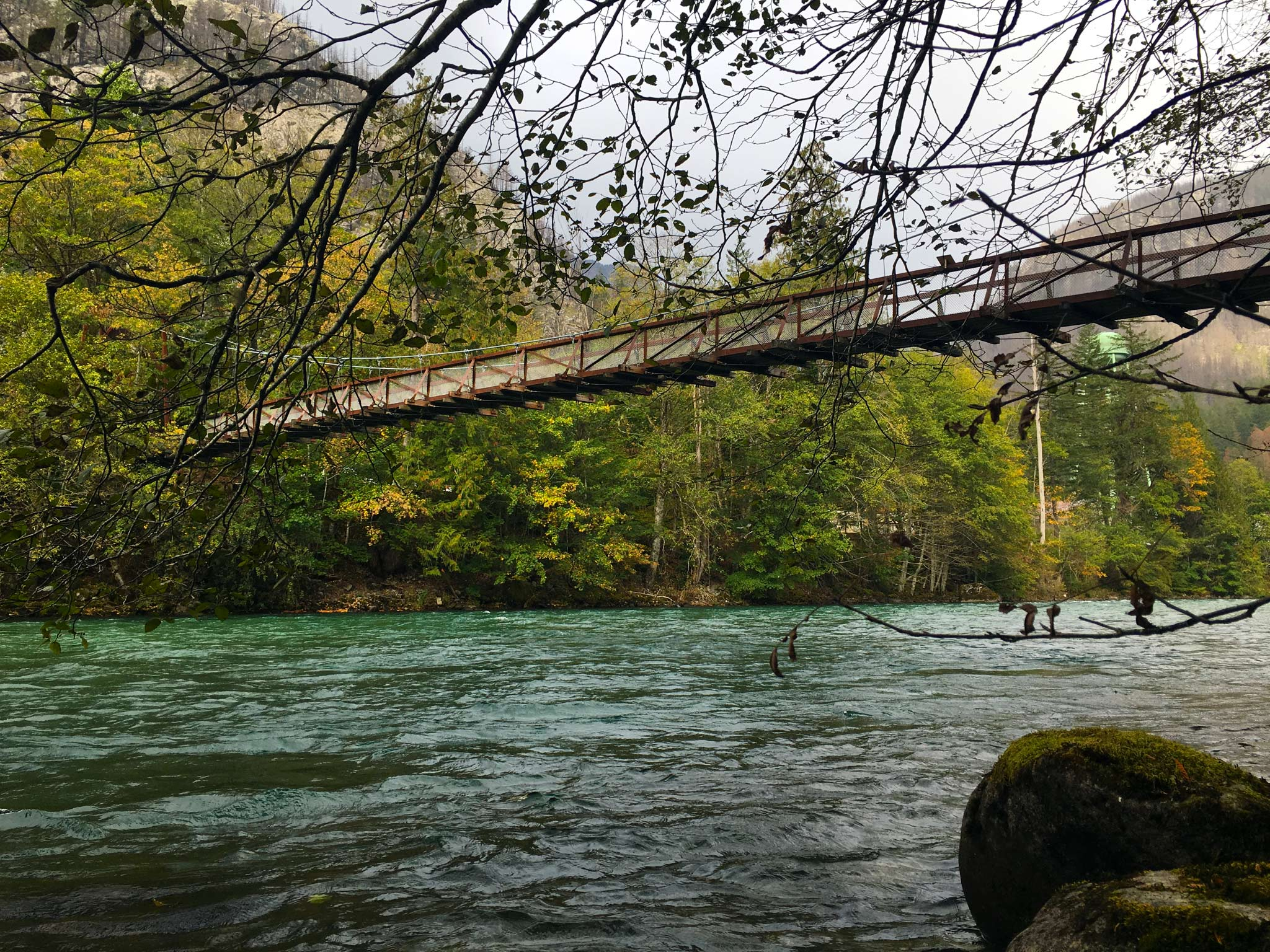 Trail of Cedars bridge, photo by Derek Wright.