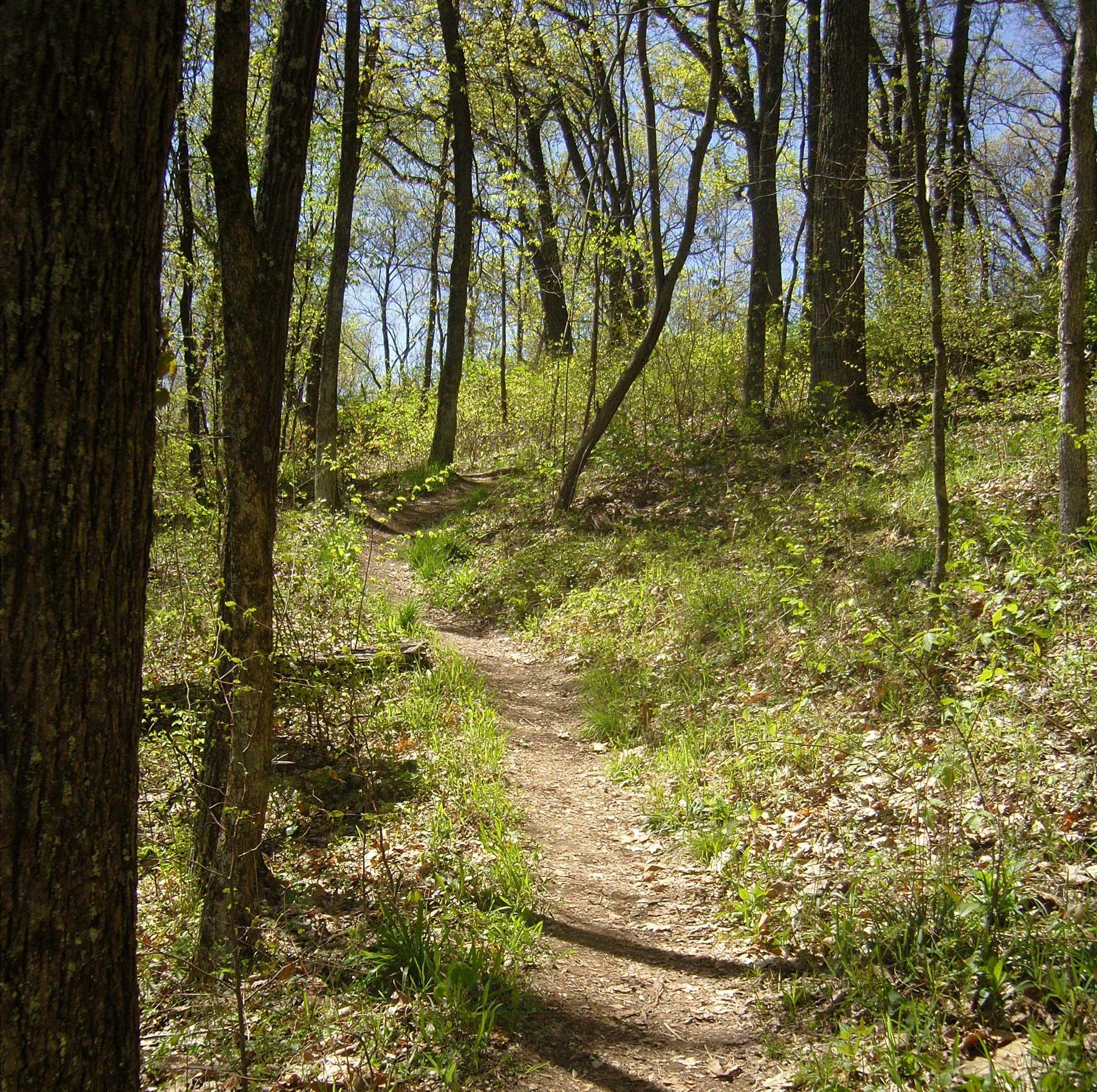 Middle Fork Nature Preserve