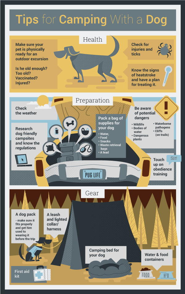 CampingWith_a_Dog.jpg