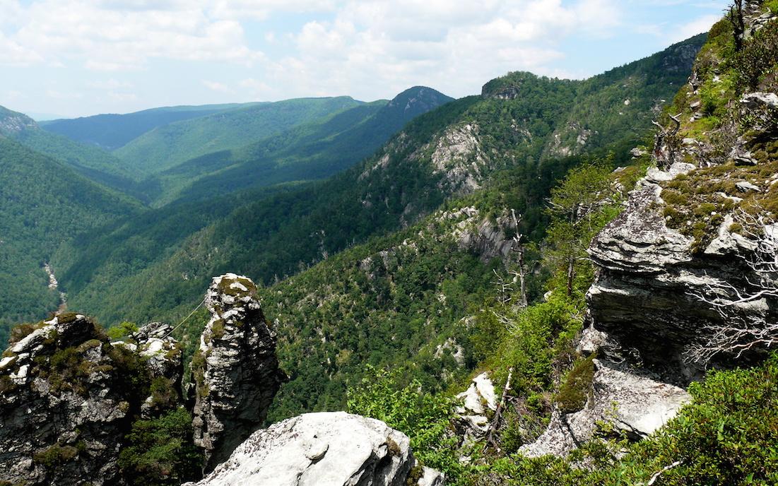Pisgah National Forest, North Carolina, photo by Ken Thomas.