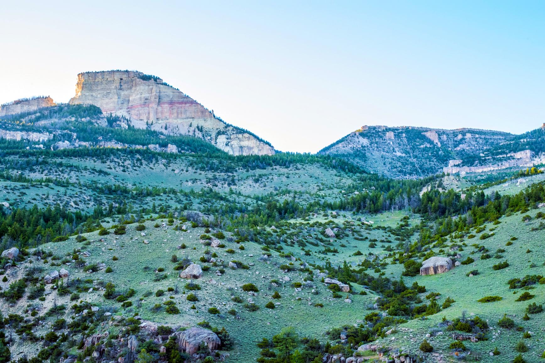 Bighorn National Forest, Shutterstock.