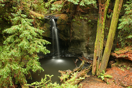 Sempervirens Falls, Big Basin Redwoods State Park,  photo  by H. Grimes / CC 2.0