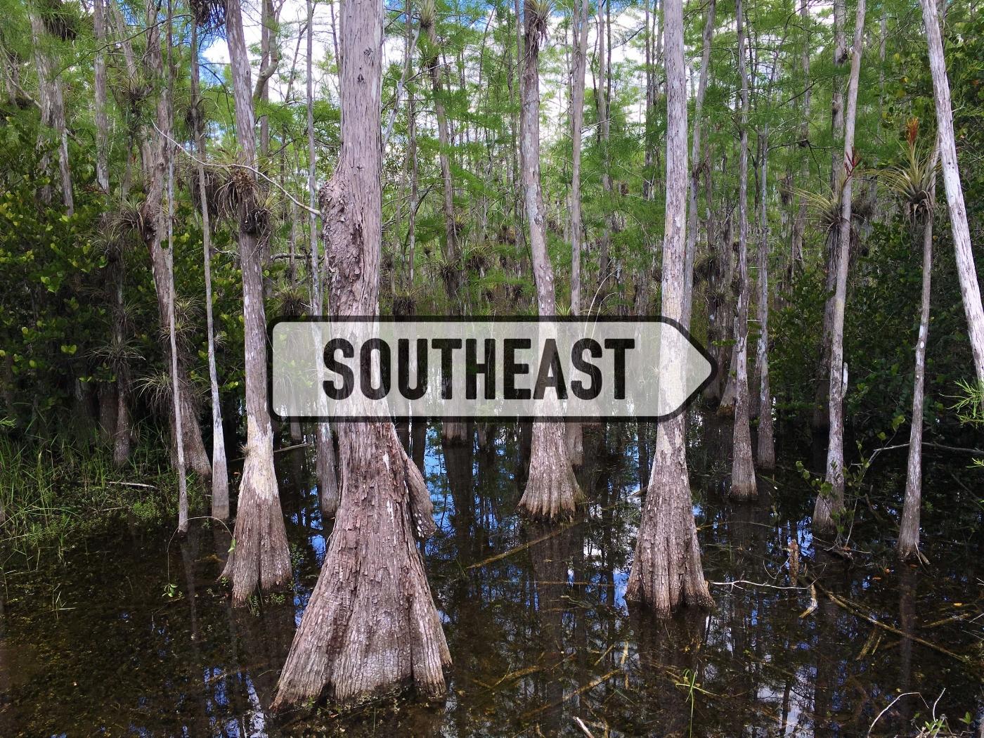 Copy of Southest