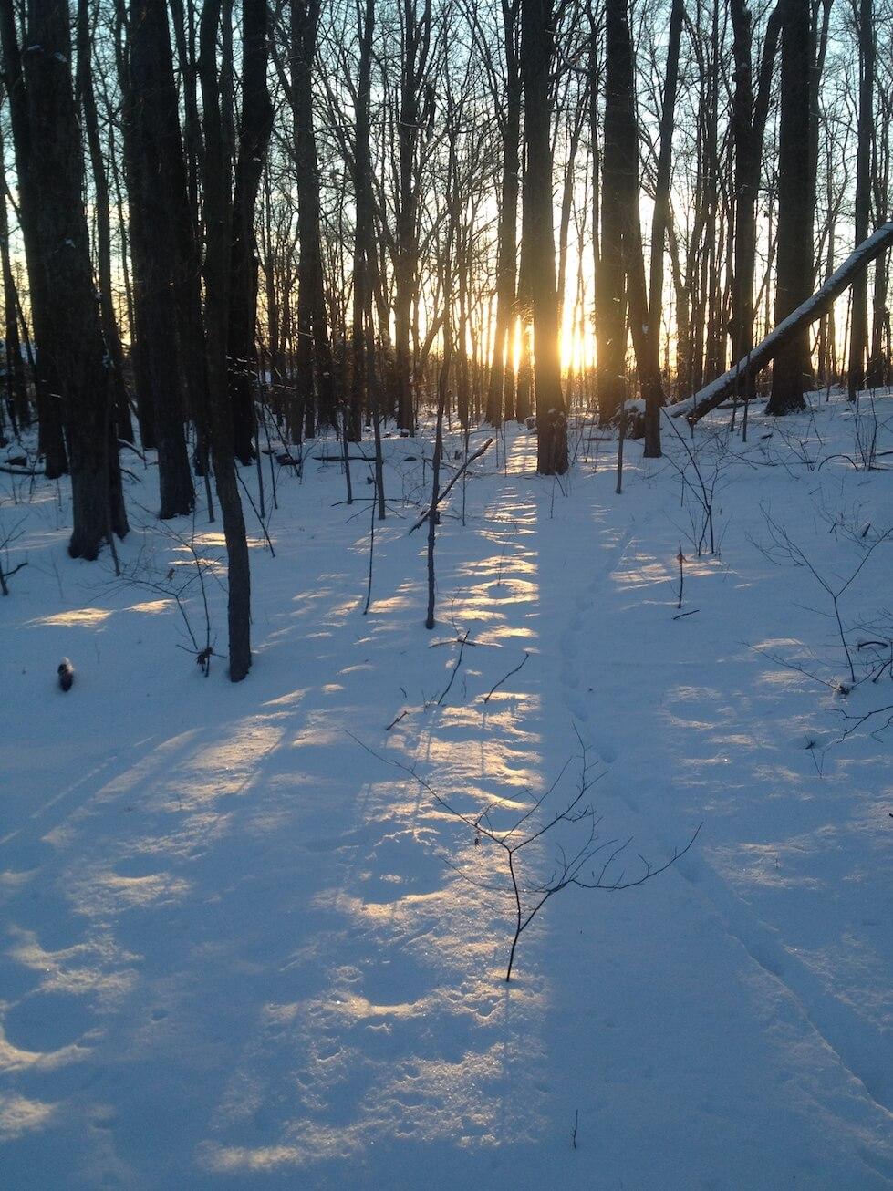 Winter in Ohio, photo courtesy Lauren Smith.