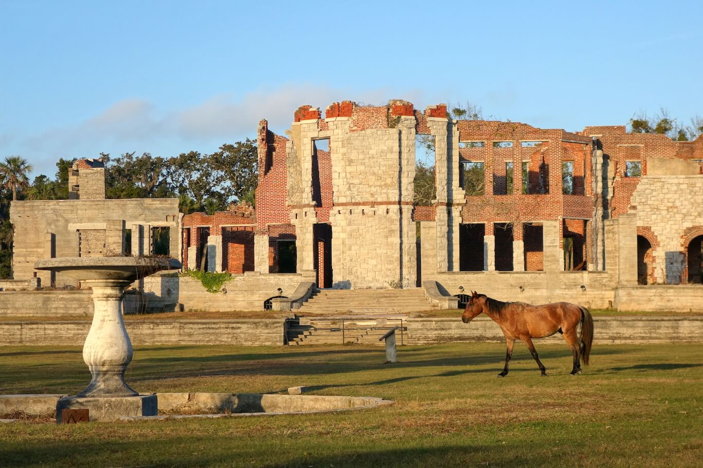 Dungeness mansion ruins, photo courtesy Joseph Bryan.