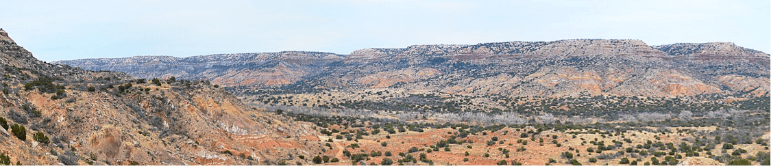 Palo Duro.png