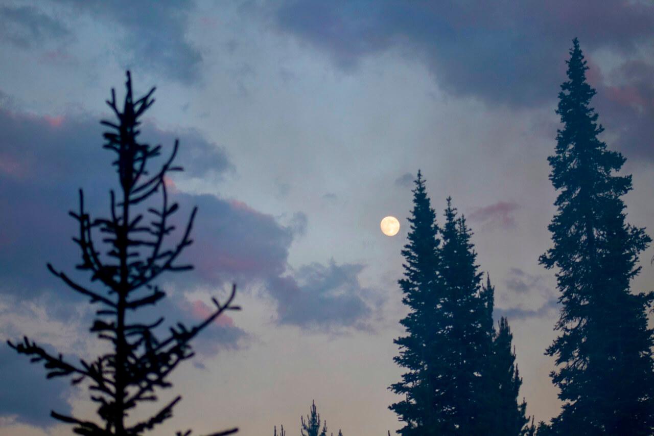 Moonrise by Yellowstone Lake, photo by Derek Wright.