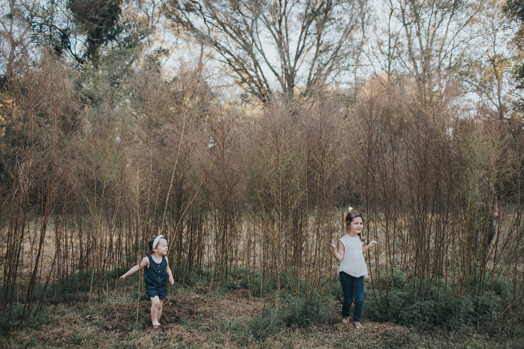florida family photographer field pinellas county largo_22.jpg