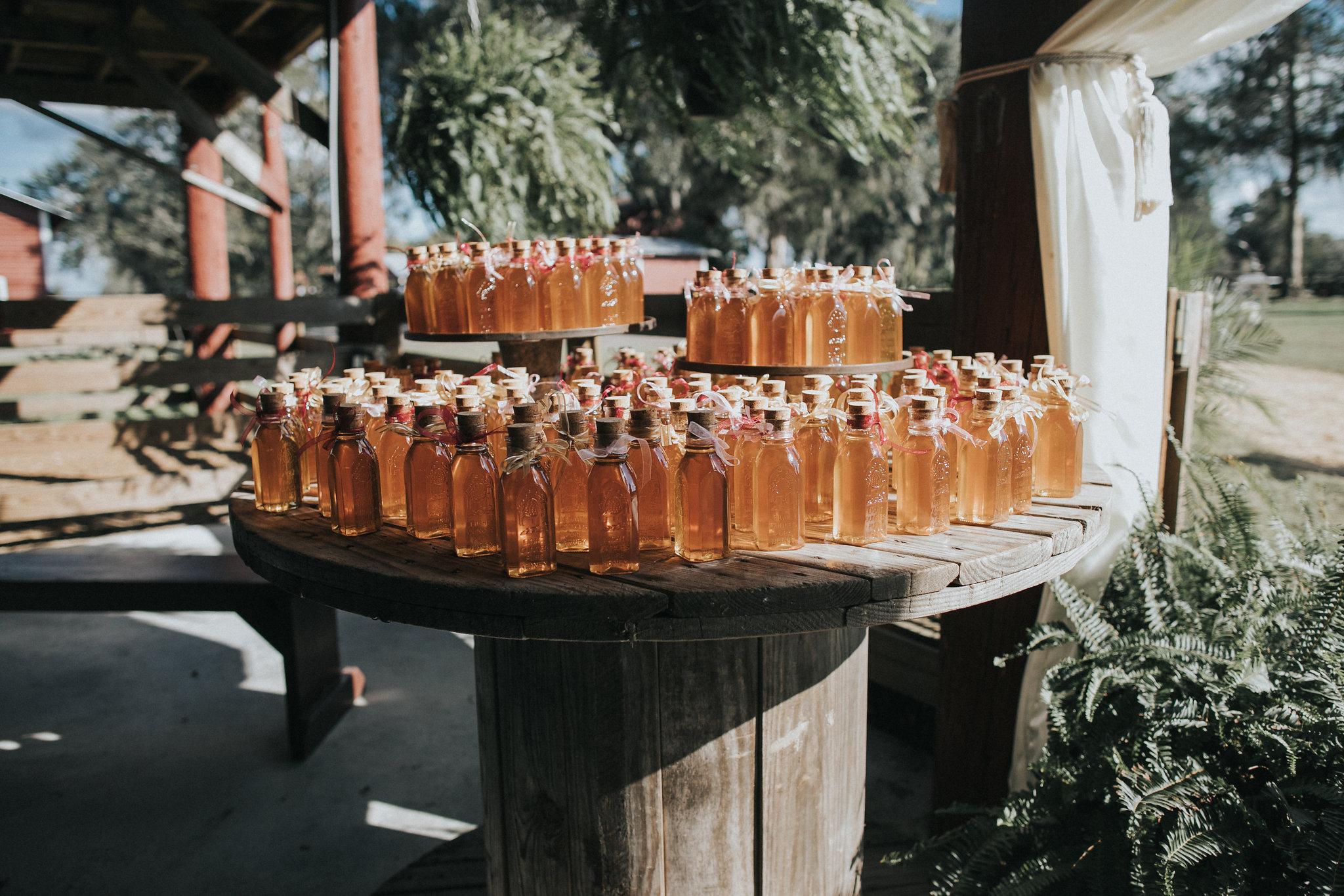 santa fe river ranch wedding blush farm wedding florida SFFR_058.jpg