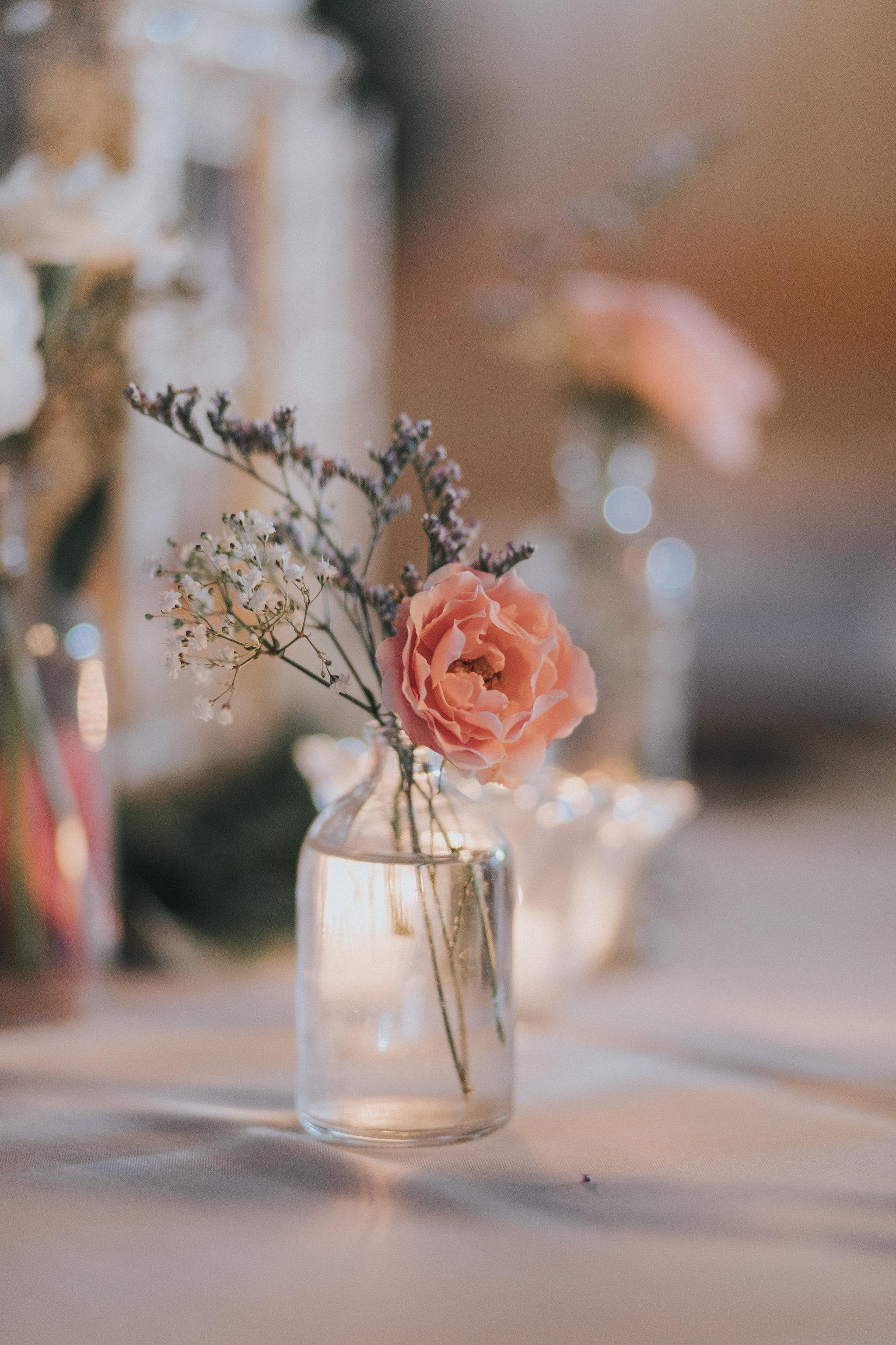 santa fe river ranch wedding blush farm wedding florida SFFR_095.jpg