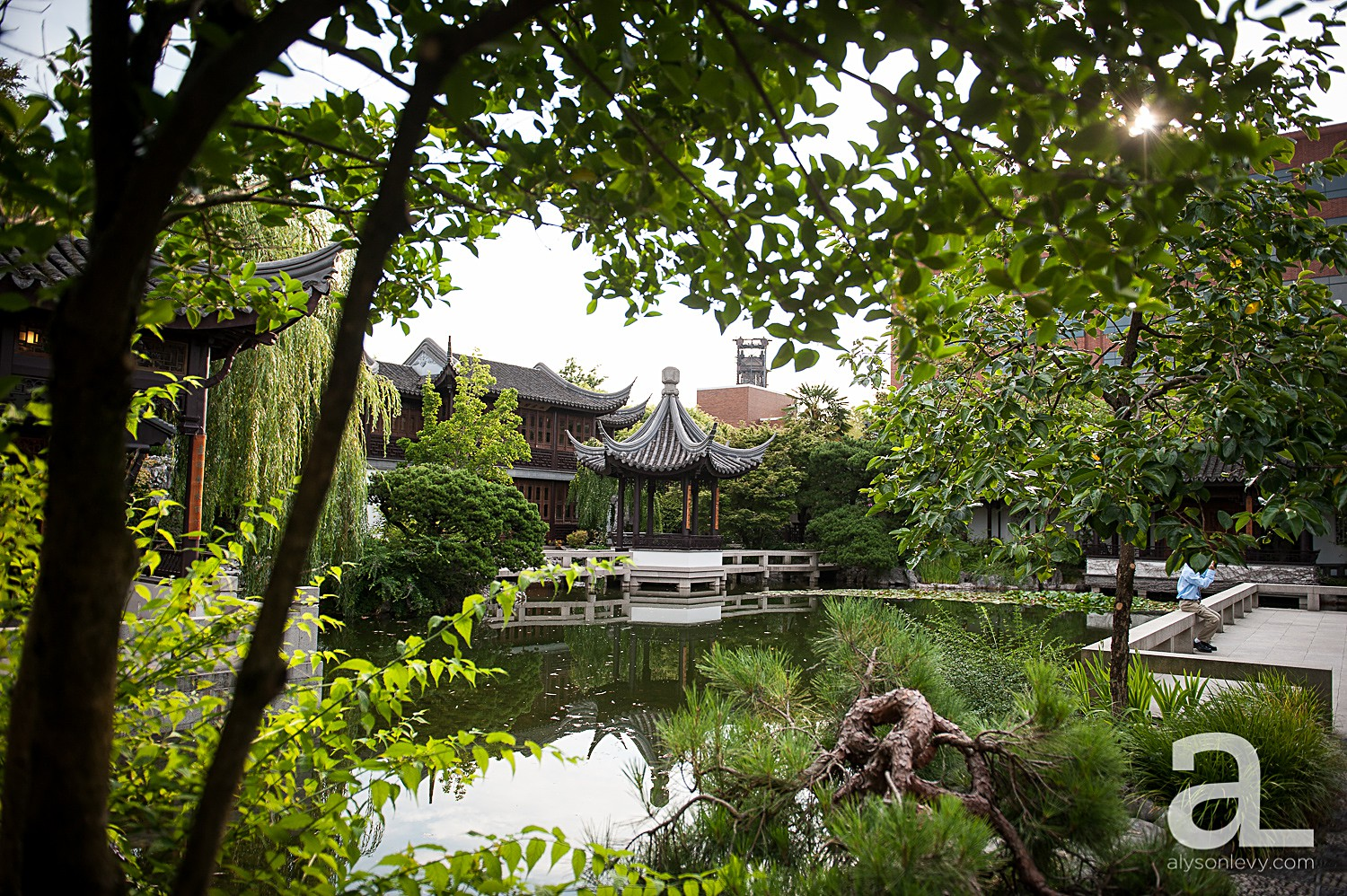 Lan Su Chinese Garden Wedding Photography Alyson Levy Photography