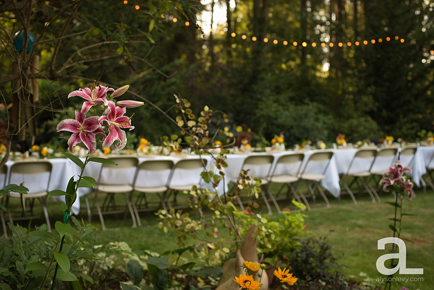 Backyard-Rehearsal-Dinner-Photography_0012.jpg