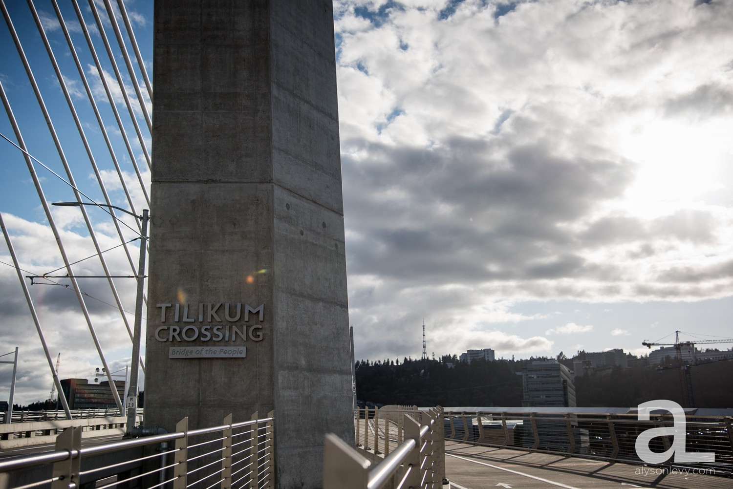 Portland-Tilikum-Bridge-Proposal-Engagement-Photography_0001.jpg