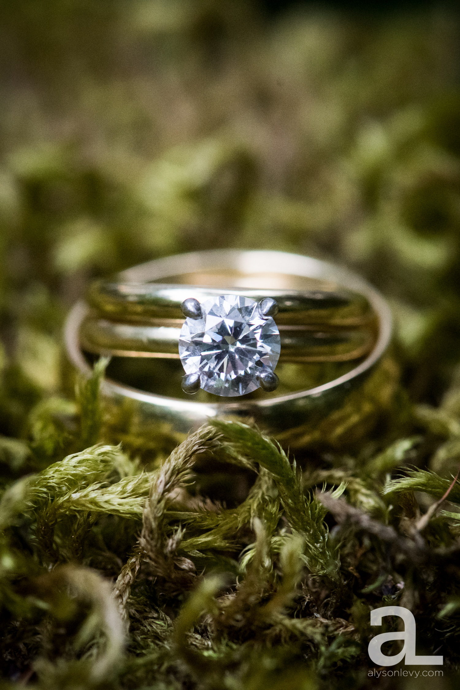 Leach-Botanical-Garden-Portland-Wedding-Photography-022.jpg