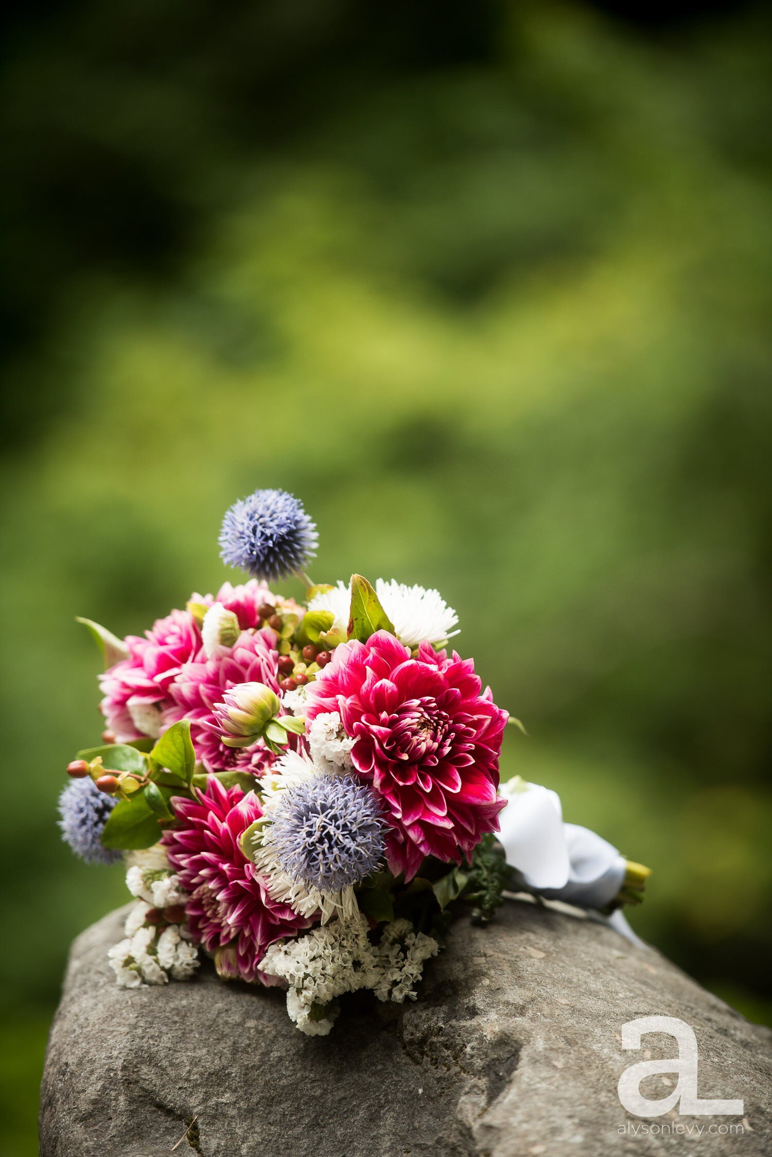 Portland-Hoyt-Arboretum-Backyard-Wedding-Photography_0013.jpg