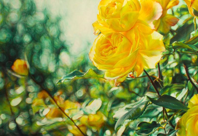綻放 Blossoming