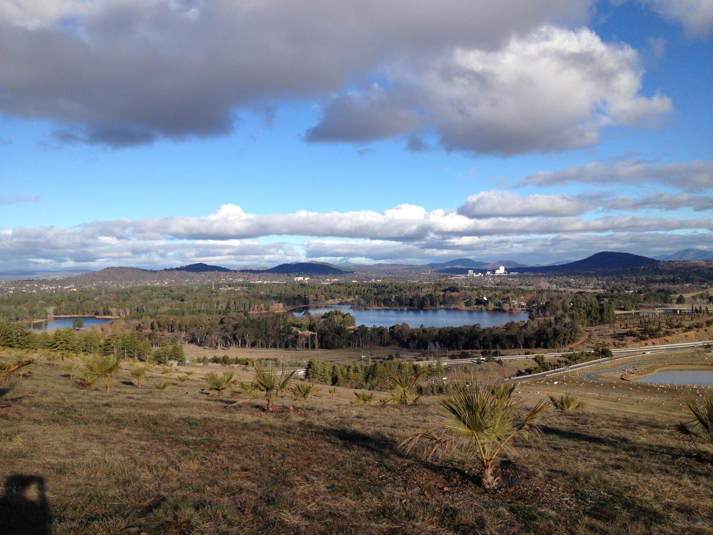 arboretum view.JPG
