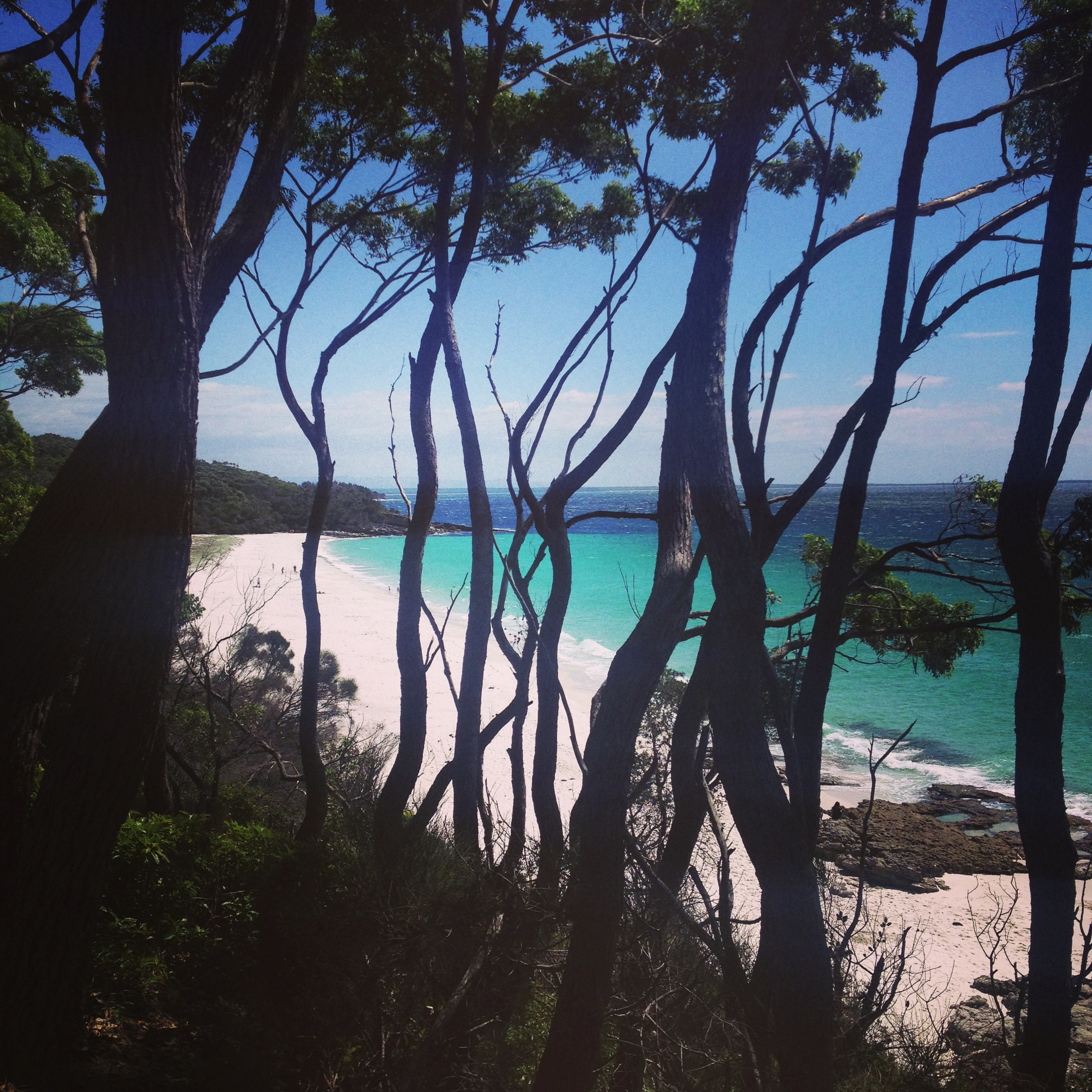 chinamans beach Hyams Beach.JPG