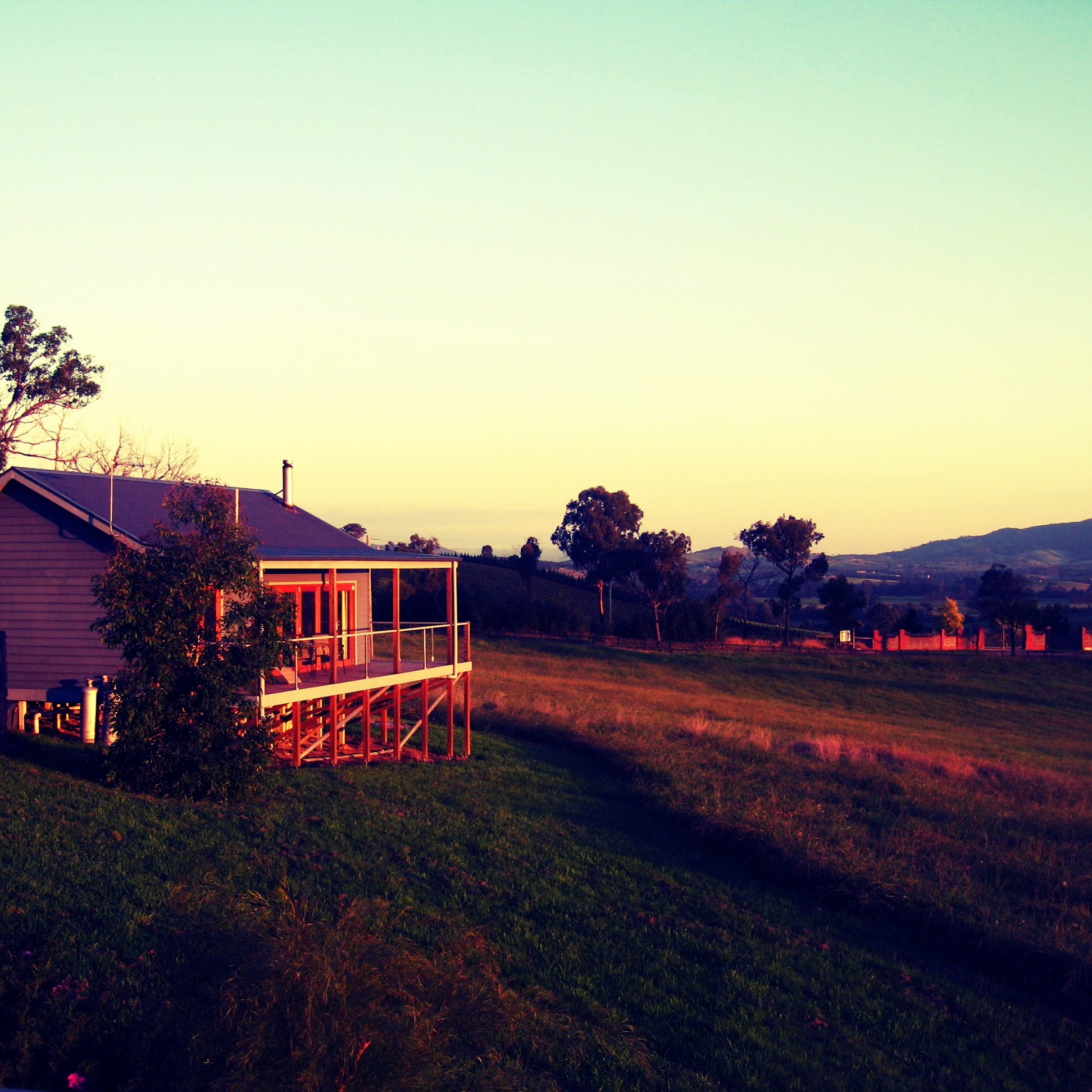 Outlook Hill Vineyard Cottages.jpg
