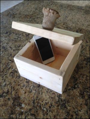 First Detox Box