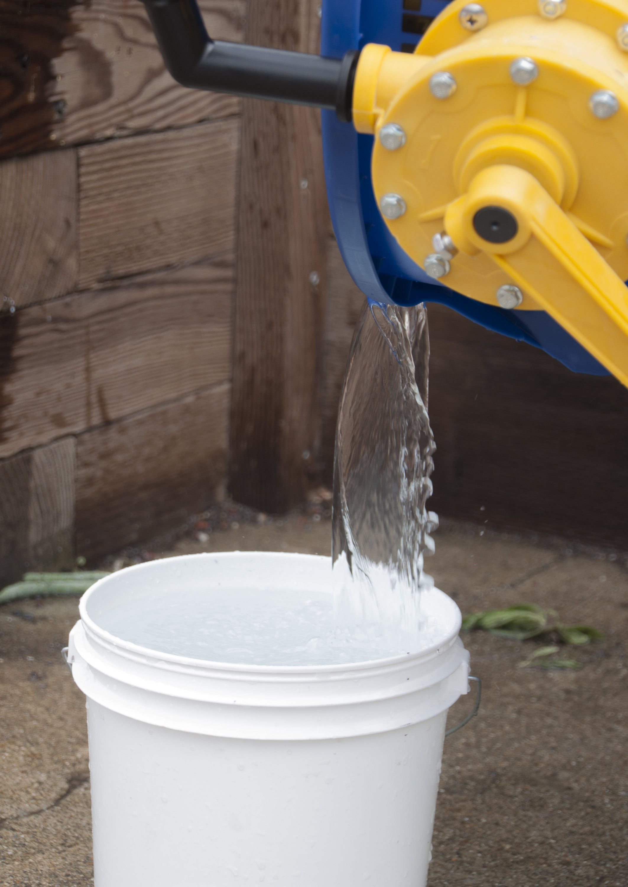 Step 5 Pour dirty water into bucket.jpg