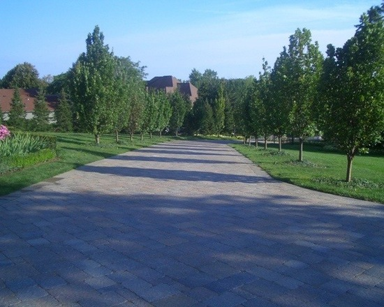 Long brick driveway lined with trees in the suburbs