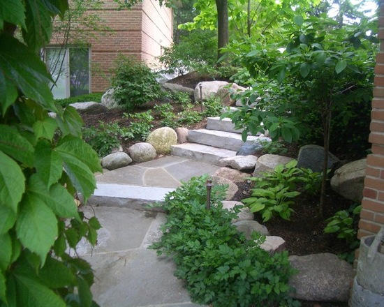 Walkway lined with shrubs and stone path