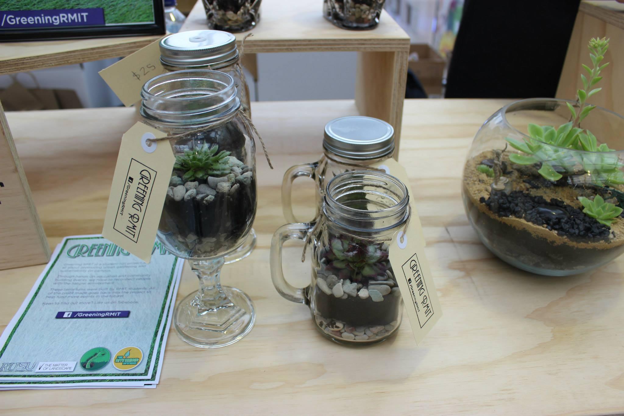 mason jar terrariums.jpg