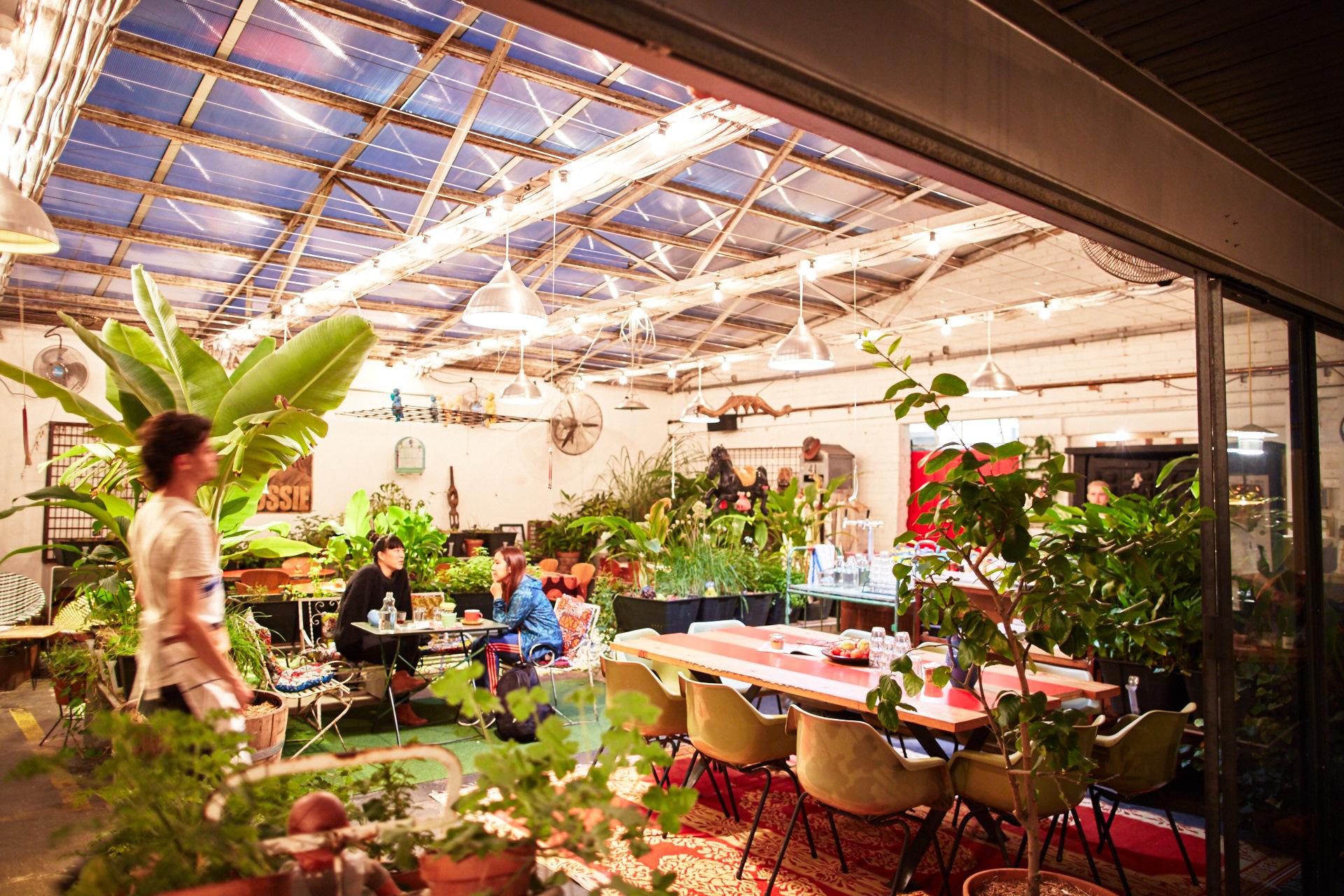Grub greenhouse.jpg