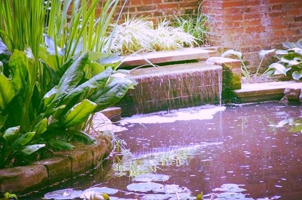 bassin d'eau naturel laval 2.jpg