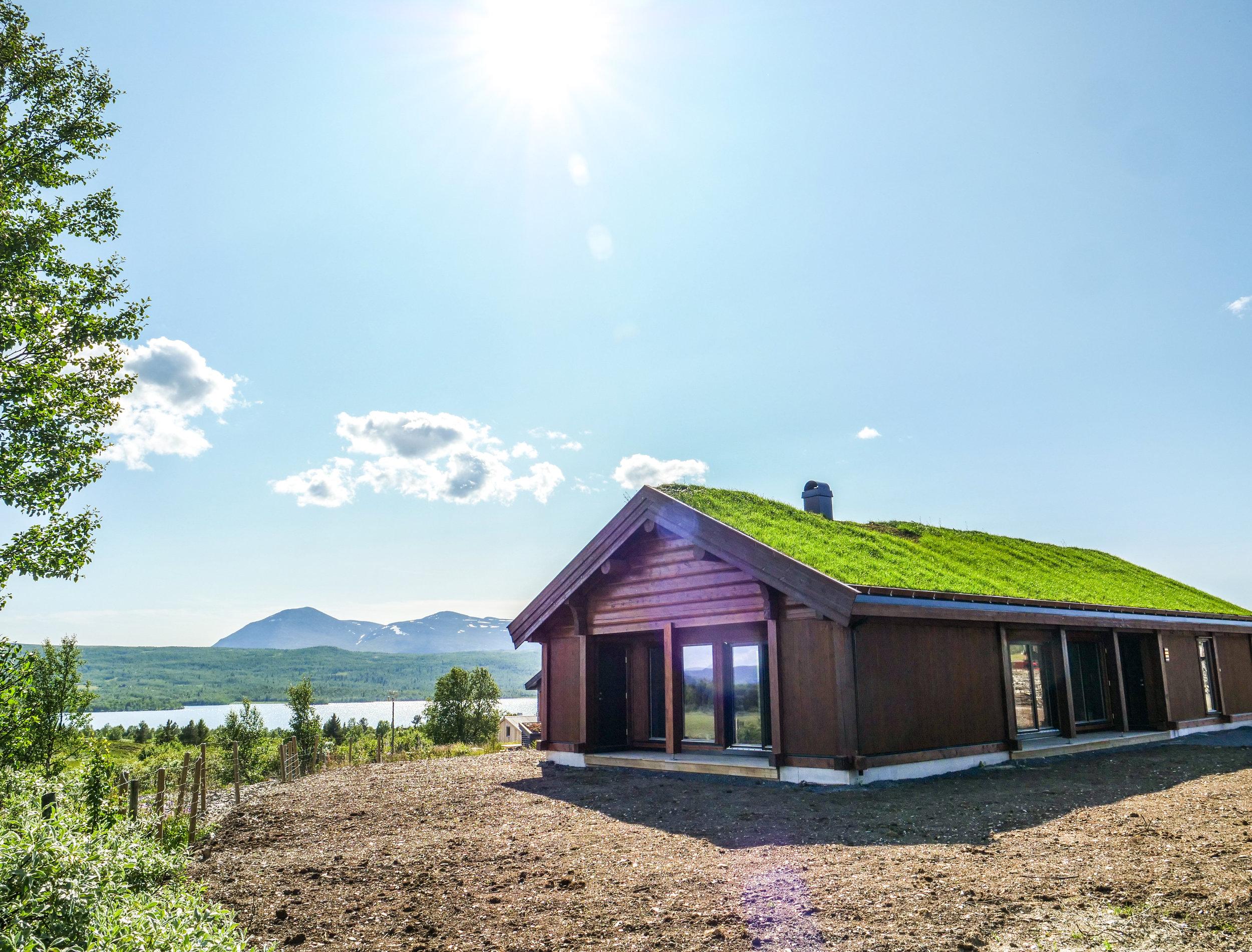 Hytte n. 1: Skogshorn