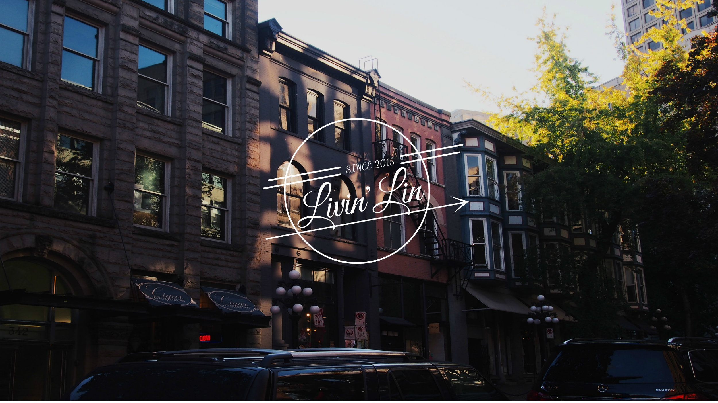 Blog Debut Graphic (2015) Photo: Lindsey Cruz Graphic: Created using 'Fotor' (Photo Editor & Design Maker)