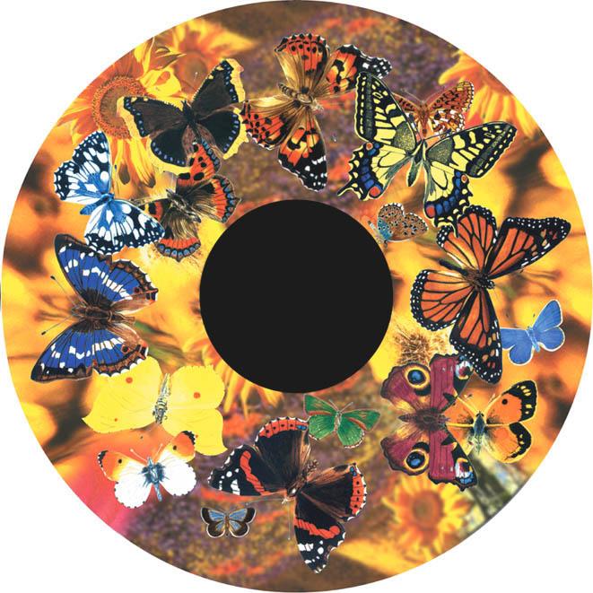 optikinetics-butterflies-fg7270.jpg