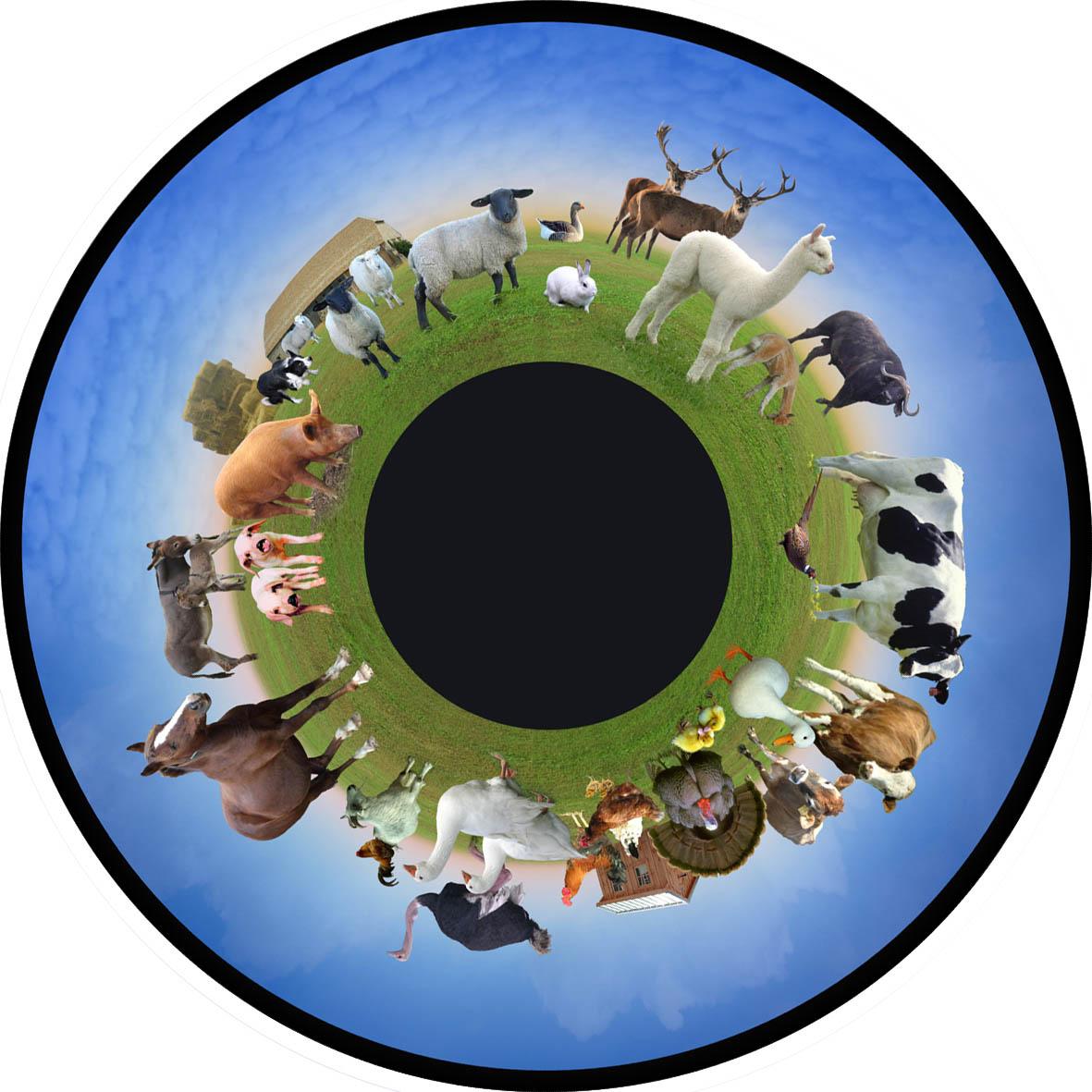 optikinetics-farm-animals-fg7435.jpg