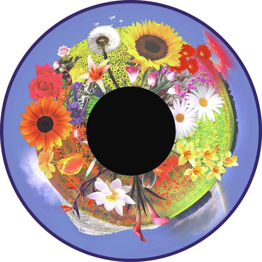 optikinetics-flowers-fg7261.jpg
