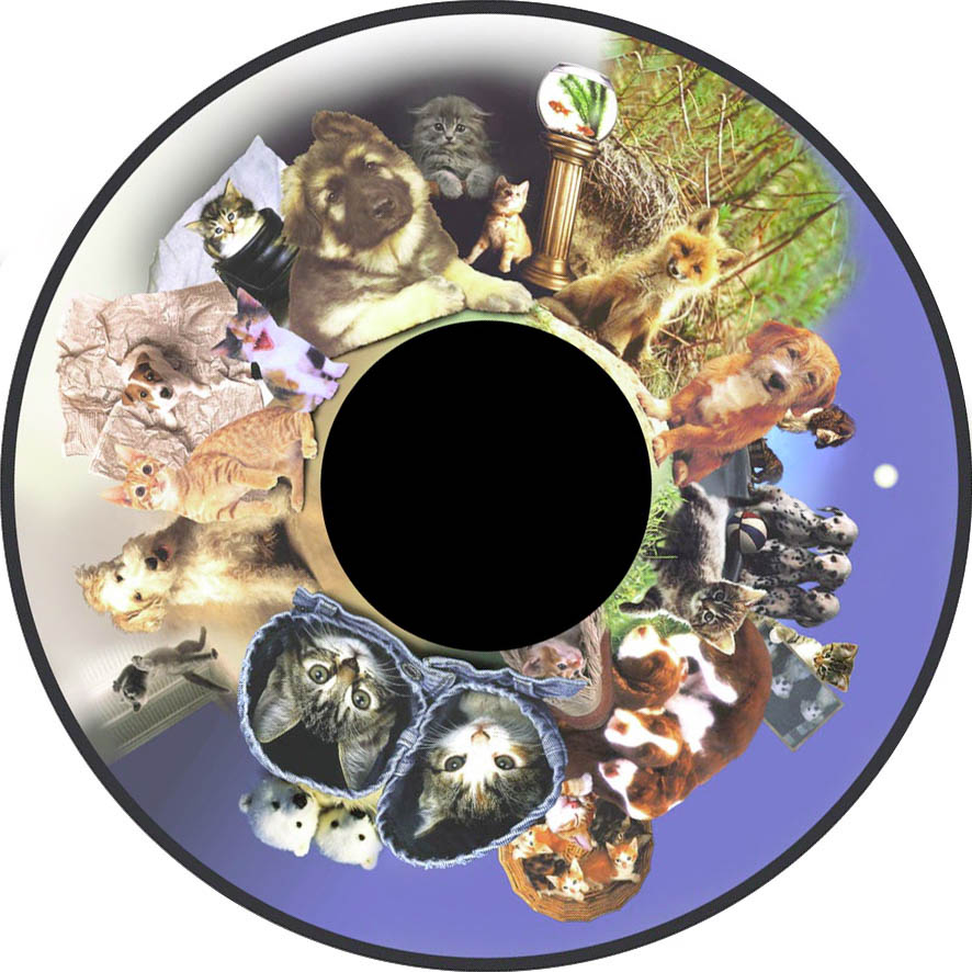 optikinetics-fluffy-fg7262.jpg