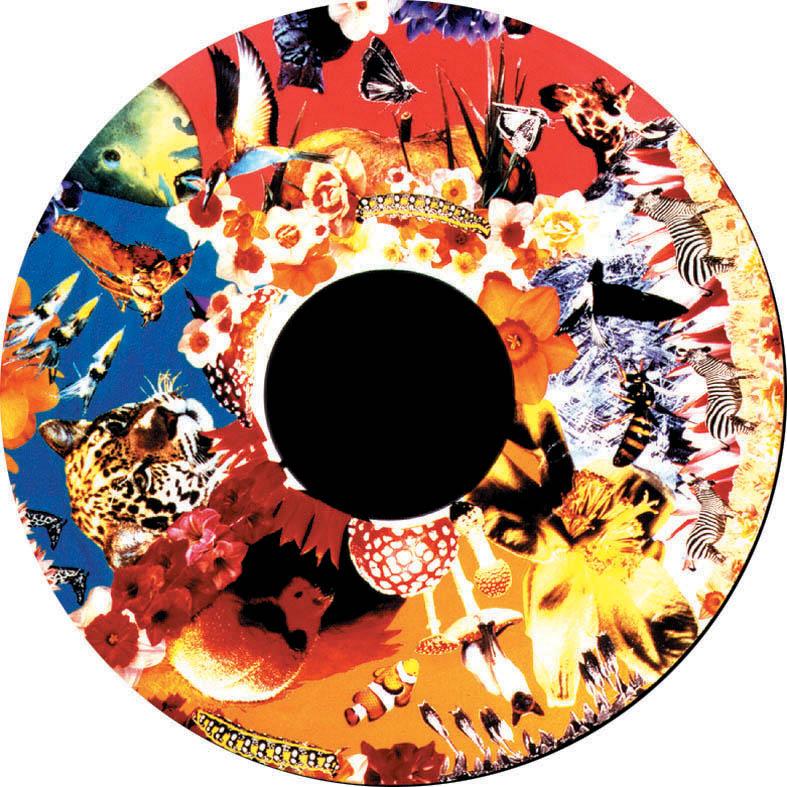 optikinetics-safari-fg7020.jpg